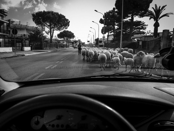 Driving in Italy - by Raffaele Esposito (creative commons)
