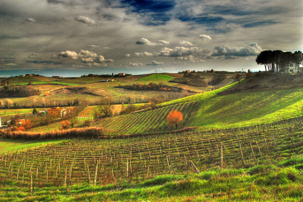 March in Tuscany || creative commons photo by Francesco Sgroi