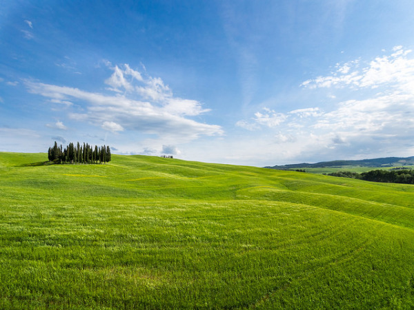 May in Tuscany || creative commons photo by Fabrizio Sciami