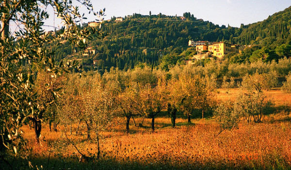 Fiesole || creative commons photo by Sandra Cohen-Rose