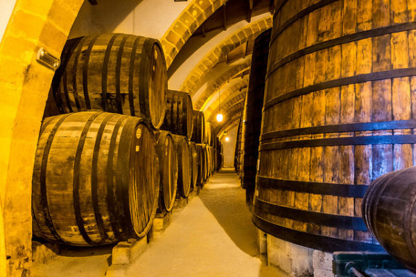 Wine barrels in a cellar || creative commons photo by Davide D'Amico