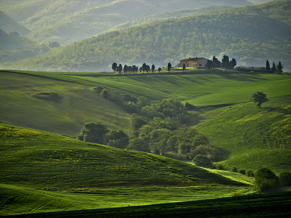 Tuscan hills || creative commons photo by Francesco Carrani
