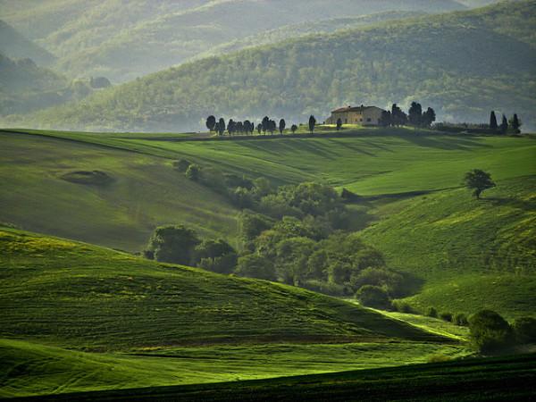 Tuscan hills || creative commons photo by Francesco Carrani