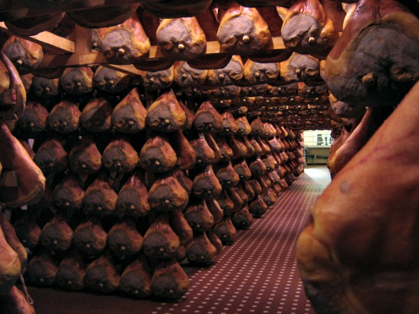 Prosciutto aging || photo (c) Jessica Spiegel all rights reserved